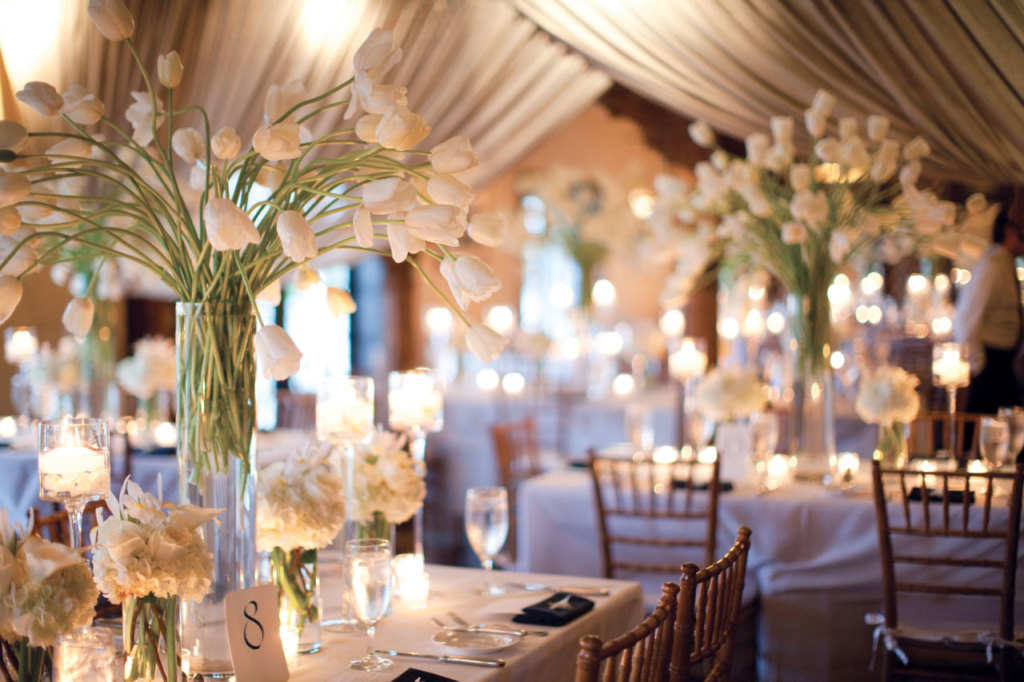 wedding-decorations-sydney-2-tulip-1024x682
