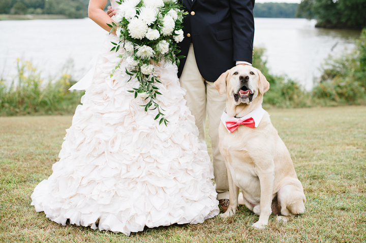 Wedding_Couple-Dogs