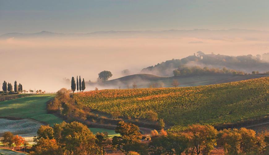 Lua de Mel na Toscana – Itália