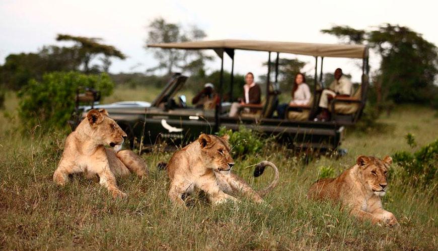 lua de mel na Tanzânia