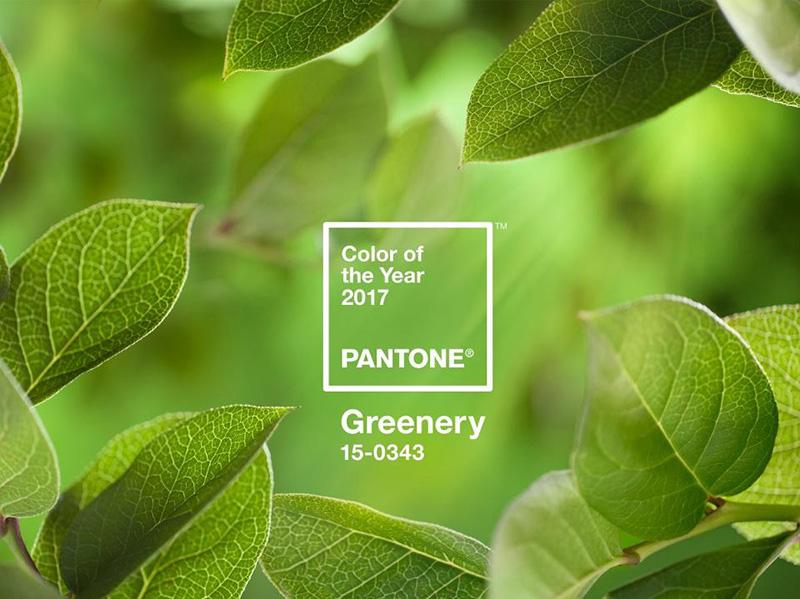 cor greenery para casamentos em 2017