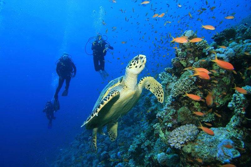 lua-de-mel-na-costa-rica-tm-travel-lejour16
