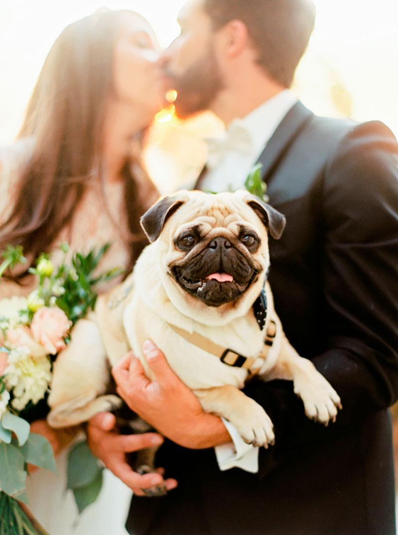 como-incluir-o-caozinho-no-casamento-lejour-3